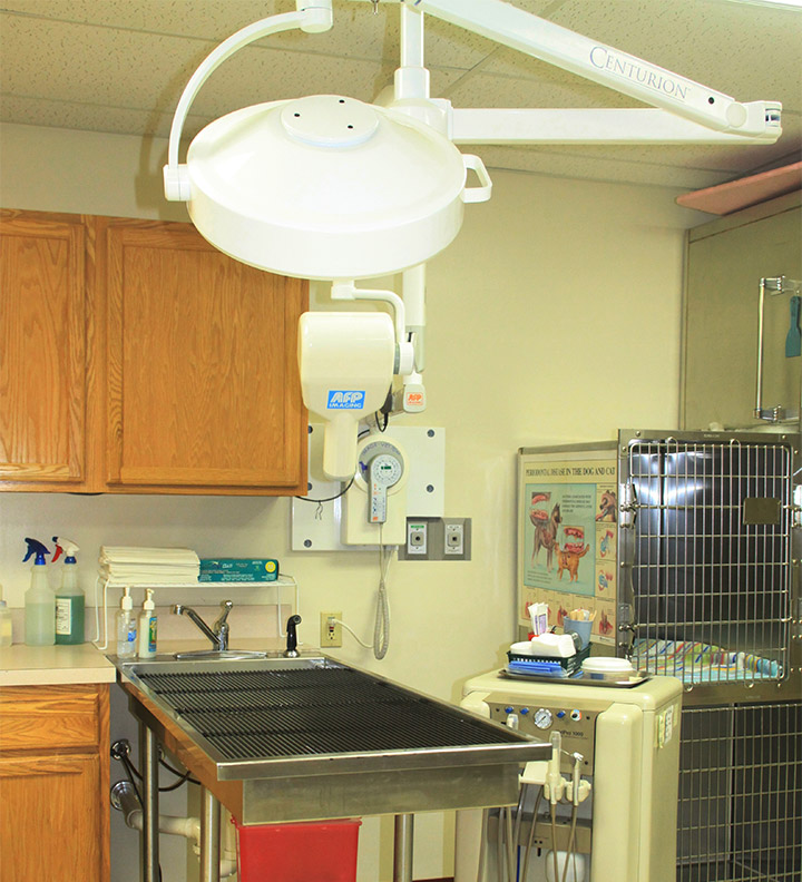 Veterinary Dentistry Suite